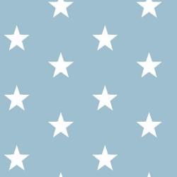 Stoff Baumwolle große Sterne 2,5cm hellblau